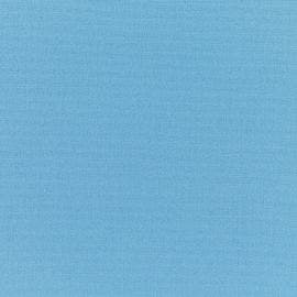Sunbrella Upholstery - Canvas Sky Blue - 5424-0000
