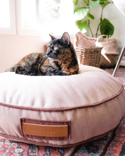 Picking A Durable Dog Bed For Your Pup Cover For Dog Bed