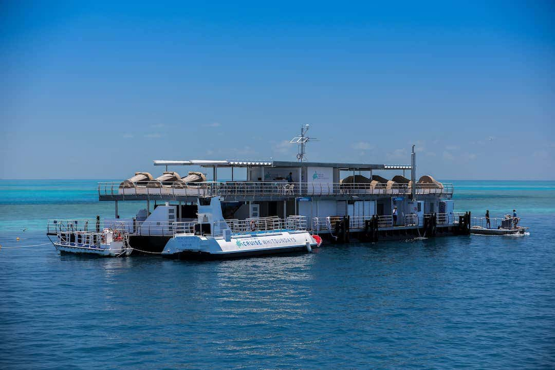Using neutral palettes, such as Sunbrella fabrics Heather Beige Plus and Oyster Plus, the Reefworld Pontoon was designed to blend in with its gorgeous surroundings.
