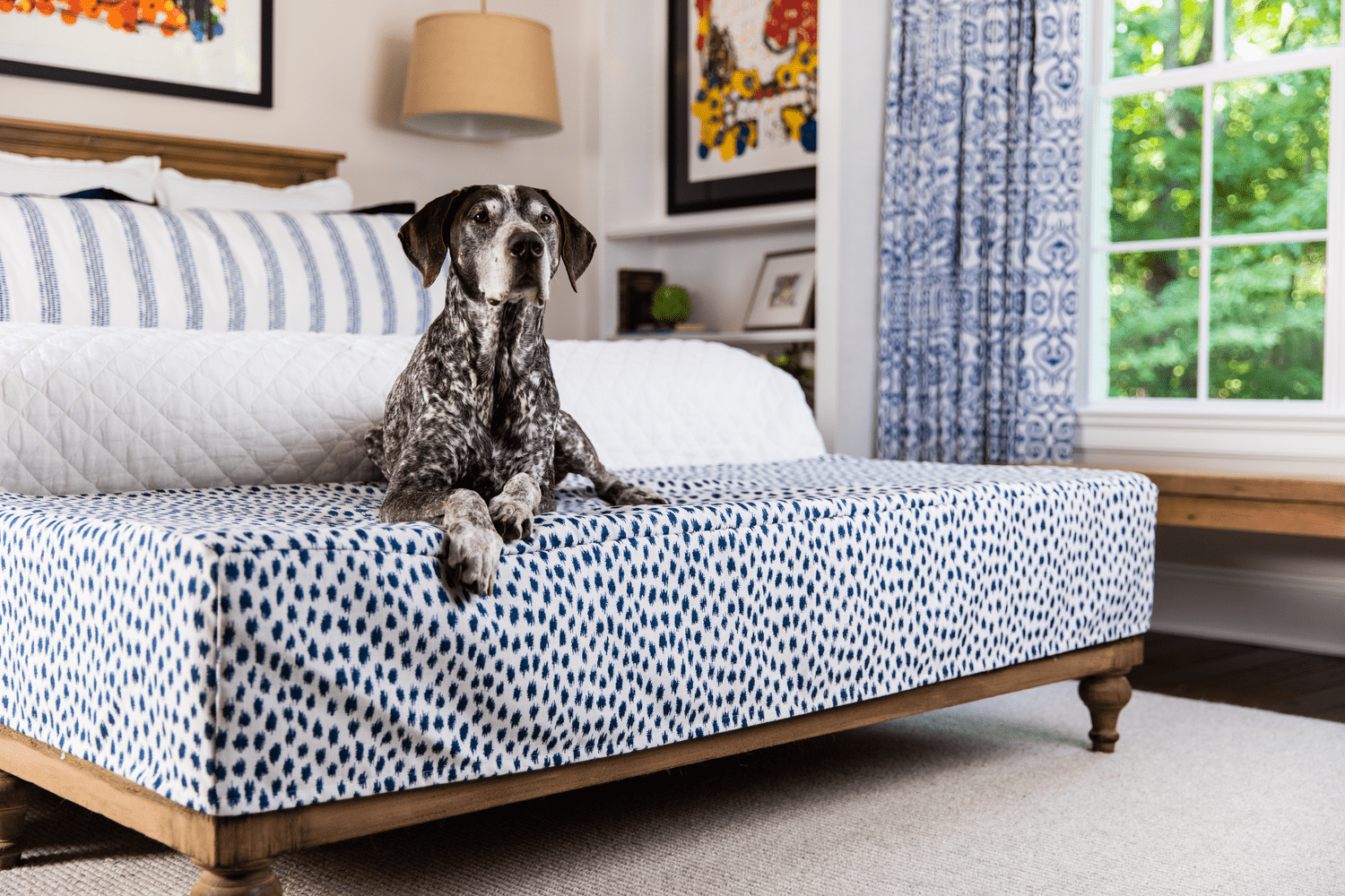 Strong, bold blues can be used as accent colors in traditional, transitional and modern interior schemes as pillows, draperies, upholstered furniture and more.