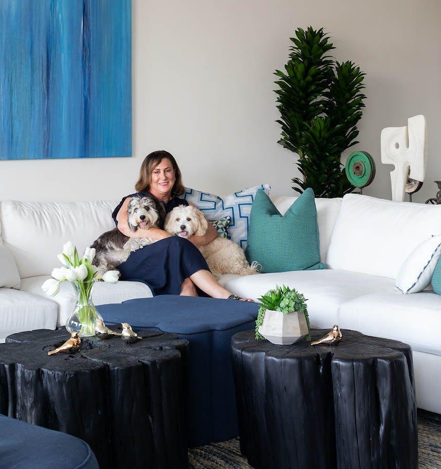 pet friendly sofa